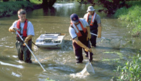 Hydrologists using an electrical shocker to collect biological samples.